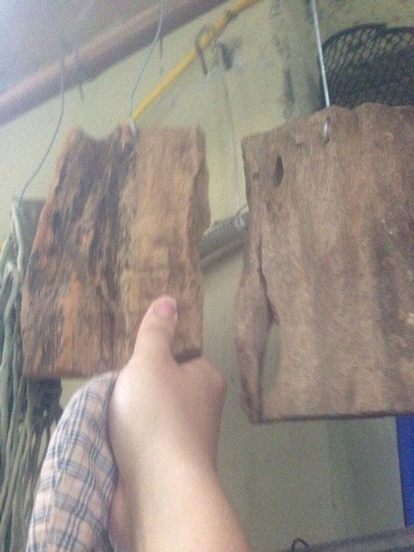 gỗ bầu ghép lan 2