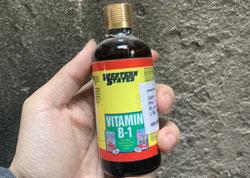 Thuốc B1 tưới cho lan