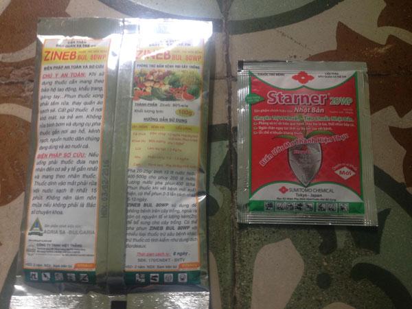 thuốc chống thôi, nấm, tăng đề kháng cho lan 1